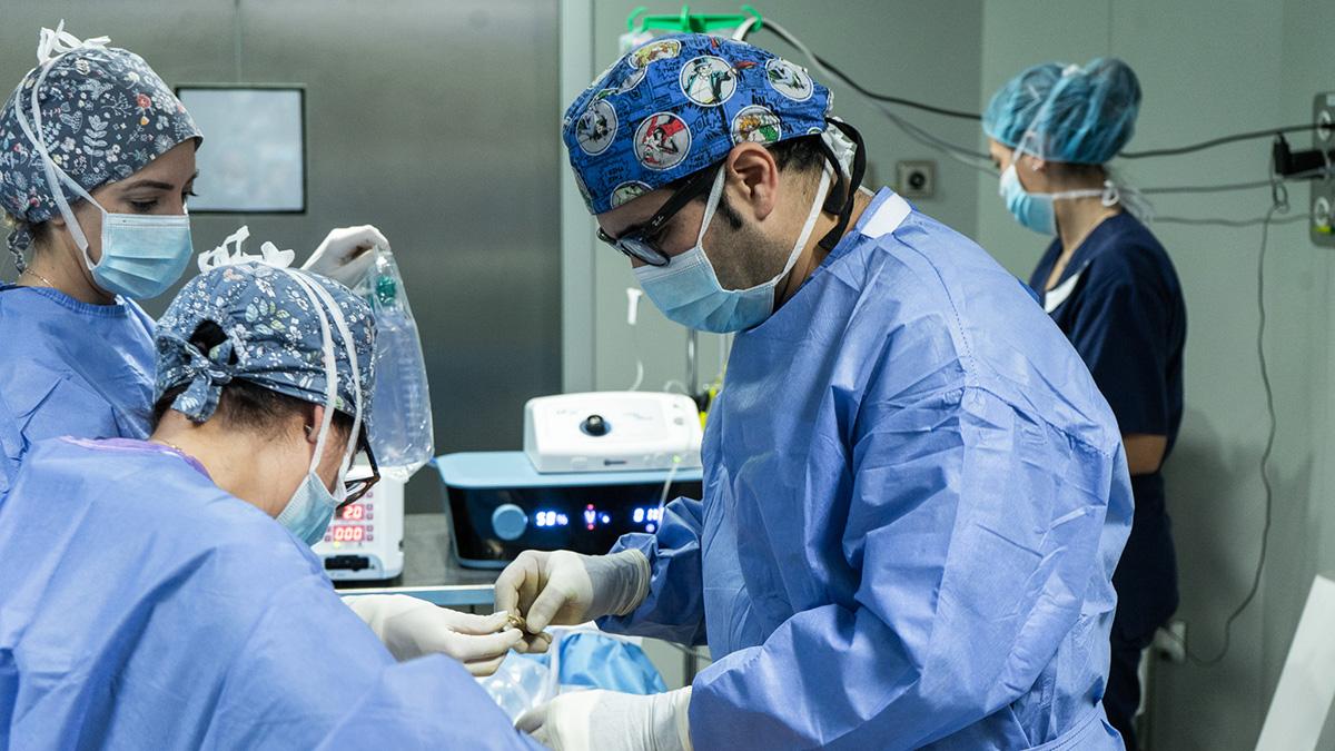 Dr quintero cirugía plástica